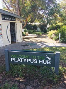 Platypus Hub